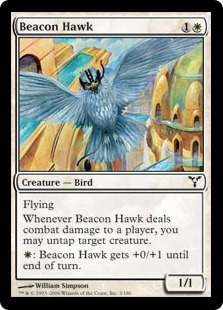 Beacon Hawk