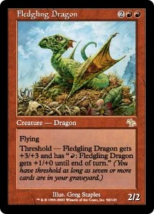 Fledgling Dragon