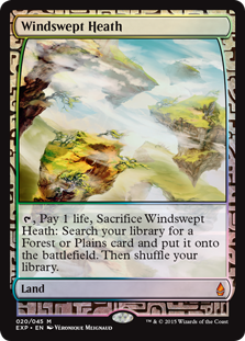 Windswept Heath - Zendikar Expedition