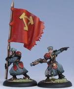 33048 Winterguard Officer & Standard